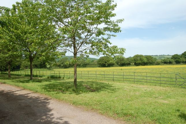 Thumbnail Land for sale in Land At Corscombe Road, Halstock, Yeovil