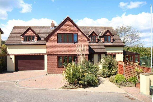 Thumbnail Detached house for sale in Gramercy Fields, Southdown Hill, Brixham