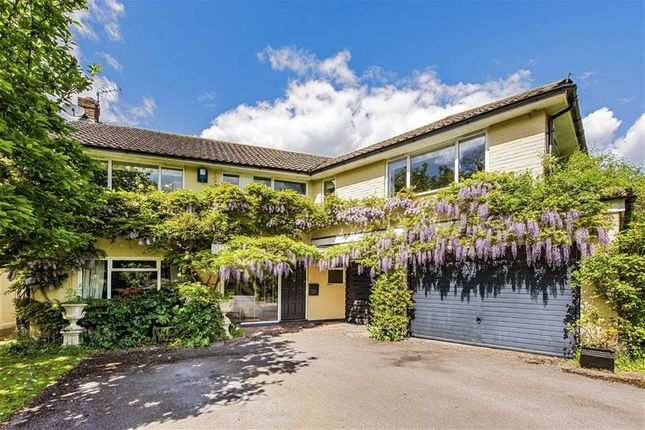 Thumbnail Property for sale in Church Road, East Molesey