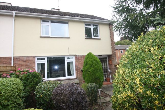 Thumbnail Semi-detached house to rent in College Road, Newton Abbot