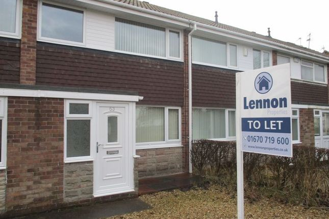 3 bed terraced house to rent in Osprey Drive, Blyth