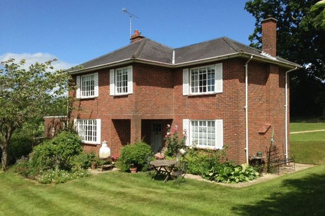 Thumbnail Detached house to rent in Bentworth, Alton