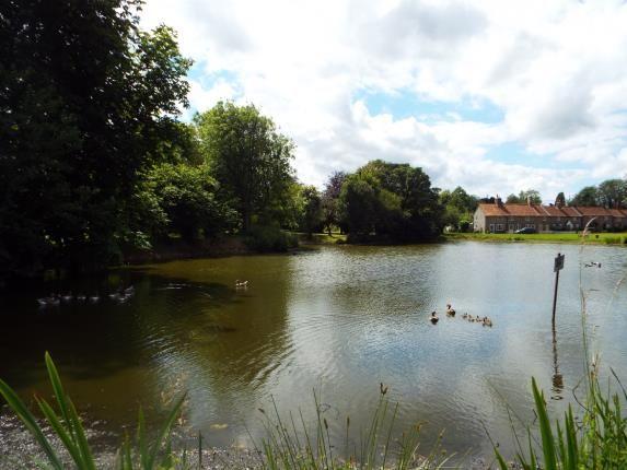 Village Pond of Great Massingham, King's Lynn, Norfolk PE32