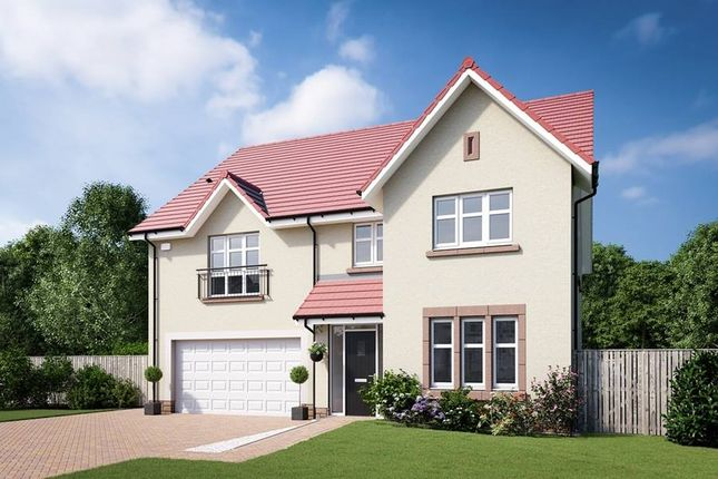 "Thumbnail Detached house for sale in ""The Lewis"" at Edinburgh Road, Belhaven, Dunbar"