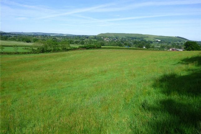 Thumbnail Land for sale in Little Lane, Okeford Fitzpaine, Blandford Forum