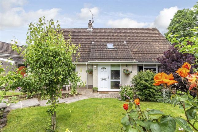 Thumbnail Bungalow for sale in Raglan Road, Mitchel Troy, Monmouth