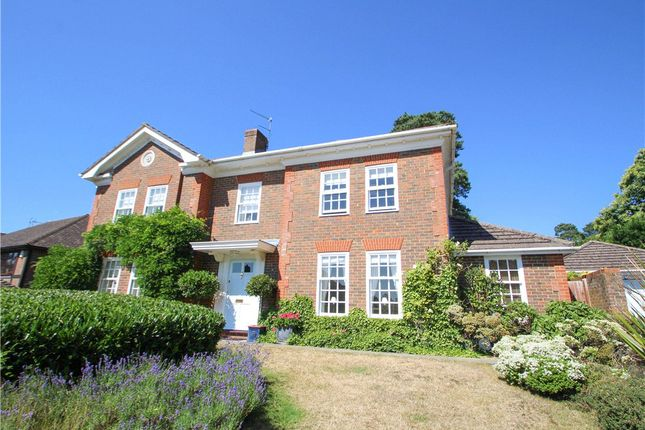 Thumbnail Detached house for sale in Fairway Heights, Camberley, Surrey