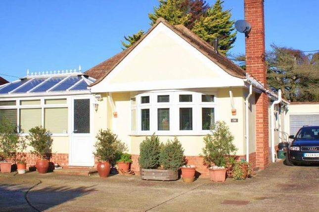 Thumbnail Detached bungalow to rent in Frinton Road, Kirby Cross, Frinton-On-Sea