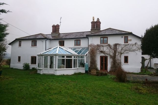 Thumbnail Detached house to rent in Shillingstone, Blandford Forum