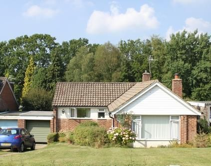 Thumbnail Detached bungalow to rent in Swaines Way, Heathfield