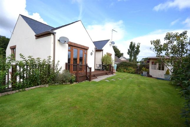 Thumbnail Detached house for sale in Holly Tree Cottage, Burton, Milford Haven, Pembrokeshire