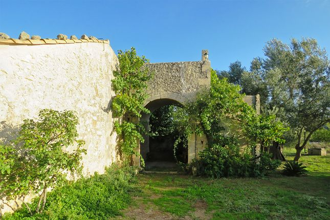 Thumbnail Country house for sale in Noto, Syracuse, Sicily, Italy