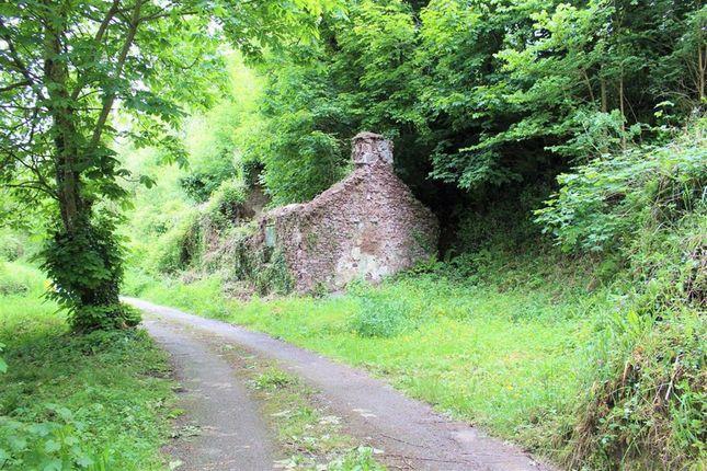 Thumbnail Cottage for sale in Golden Brake, Pembroke
