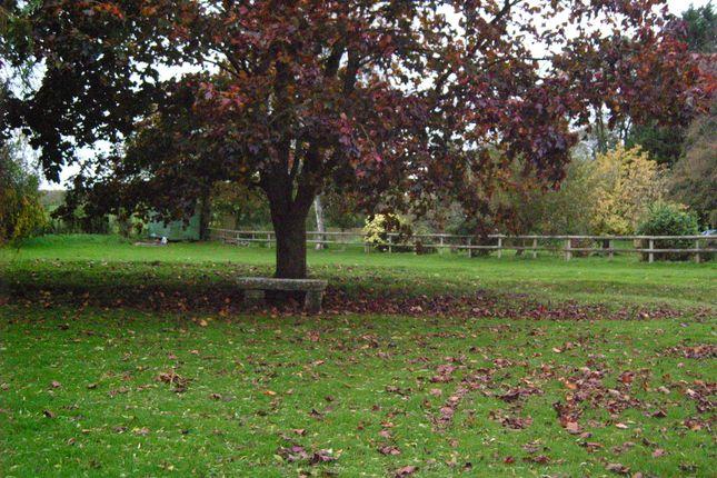 Photo 5 of Horse Pond Lane, East Morden, Wareham BH20