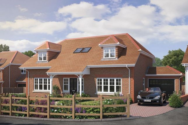 Thumbnail Detached house for sale in Birch Grove, Potters Bar