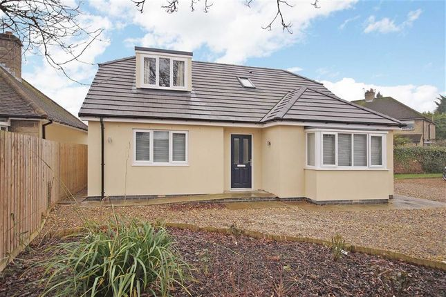 Thumbnail Detached bungalow for sale in York Road, Knaresborough, North Yorkshire