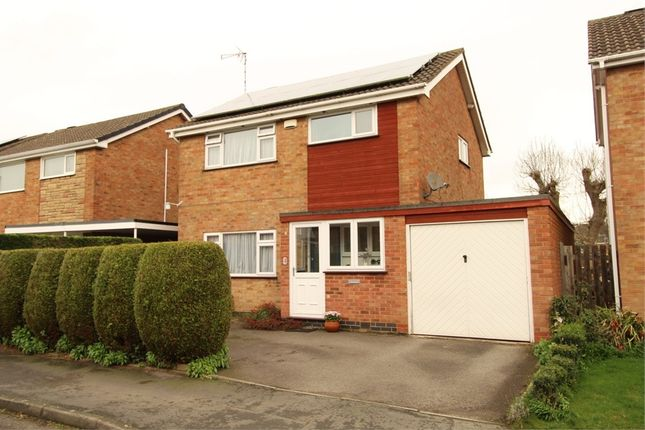 Thumbnail Detached house for sale in Maple Drive, Lutterworth