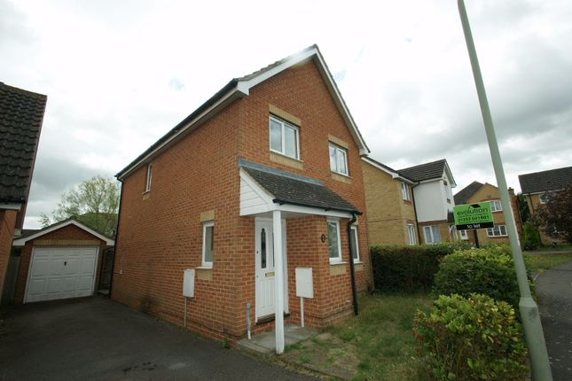 Thumbnail Detached house to rent in Butterside Road, Park Farm