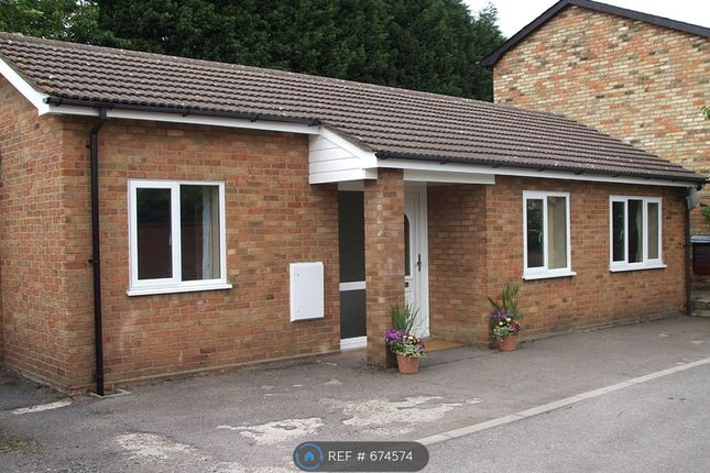 Thumbnail Bungalow to rent in Coles Close, Bedford