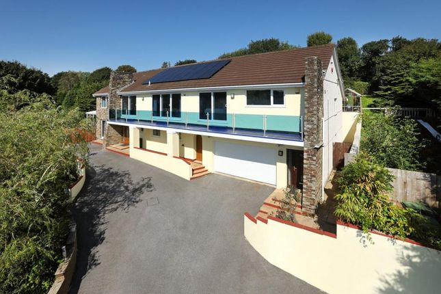Thumbnail Detached house for sale in Earls Wood Drive, Plymouth, Devon