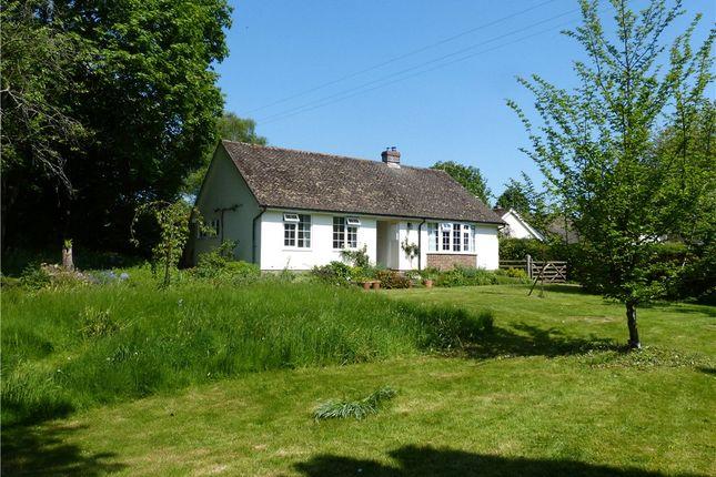 Thumbnail Detached bungalow to rent in Tarrant Gunville, Blandford Forum, Dorset