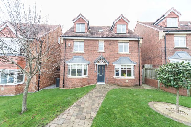 Thumbnail Detached house for sale in Merlin Way, Hartlepool