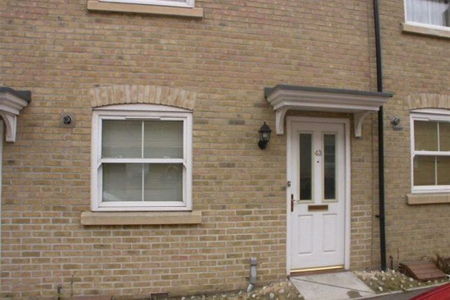 Thumbnail Detached house to rent in Wickham Crescent, Braintree