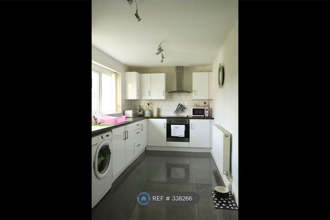 Thumbnail Semi-detached house to rent in Zamor Crescent, Thurcroft, Rotherham