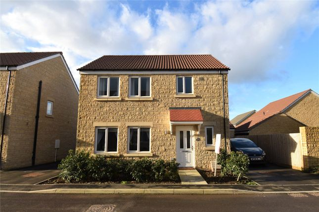 Thumbnail Detached house for sale in Bluebell Road, Frome, Somerset