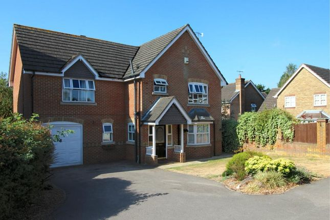 Thumbnail Detached house for sale in Ayjay Close, Aldershot