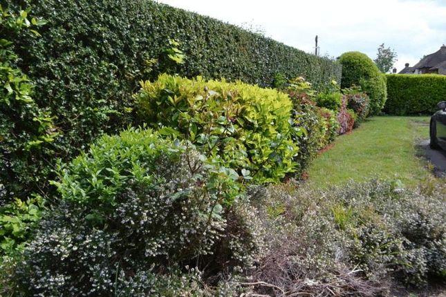Side Garden of Yardley Park Road, Tonbridge TN9