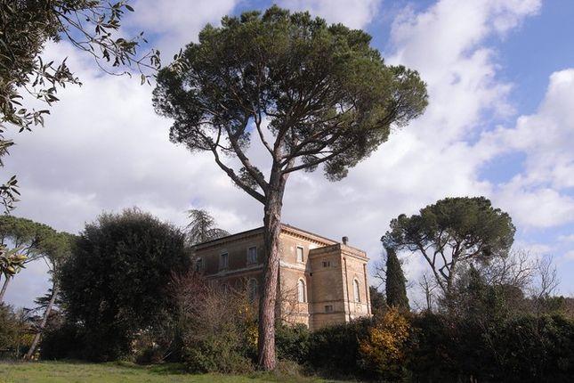 From Angle of Villa Bigi, Pozzuolo, Umbria