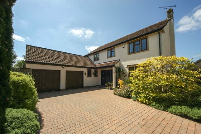 Thumbnail Detached house for sale in 2 Dunns Close, Wedmore, Somerset