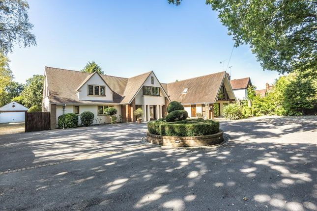 Detached house to rent in Ascot, Berskhire