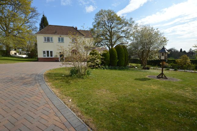 Thumbnail Detached house for sale in Coldhill, Lovedean