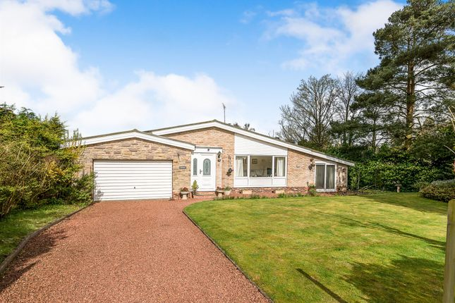 Thumbnail Detached house for sale in Kings Drive, Hopton, Stafford