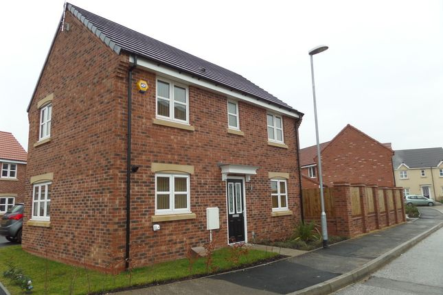 Thumbnail Detached house for sale in Pinter Lane, Gainsborough