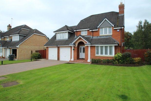 Thumbnail Property to rent in Smithycroft, Ferniegair, Hamilton