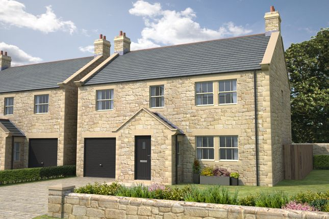 Thumbnail Detached house for sale in Skyfall, Gloster Hill Farm, Amble Northumberland