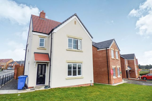 Thumbnail Detached house to rent in Elecampane Lane, Morpeth