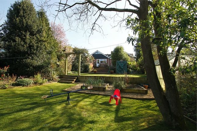 Thumbnail Detached bungalow for sale in Chandos Drive, Martlesham, Woodbridge, Suffolk