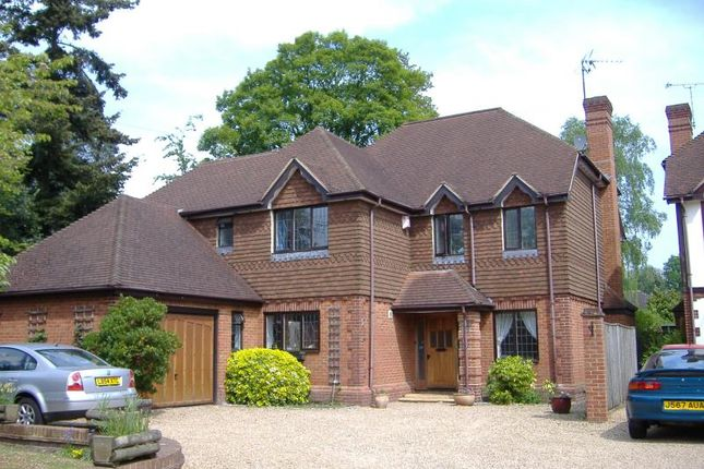 Thumbnail Detached house to rent in Park Road, Woking, Surrey