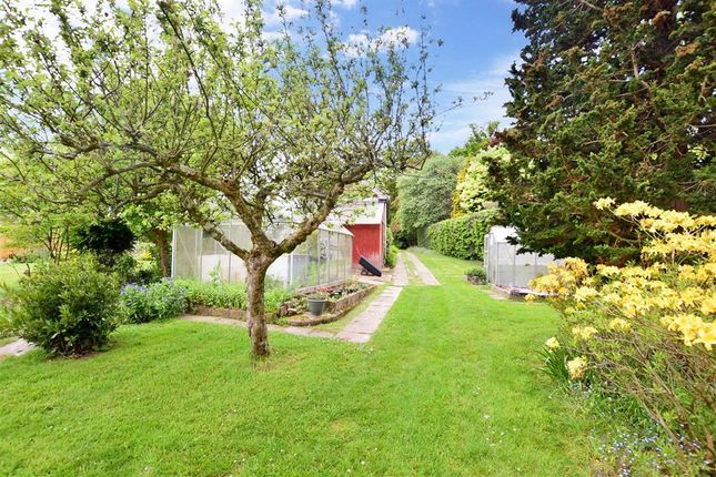 Side Garden of Five Ashes, Mayfield TN20