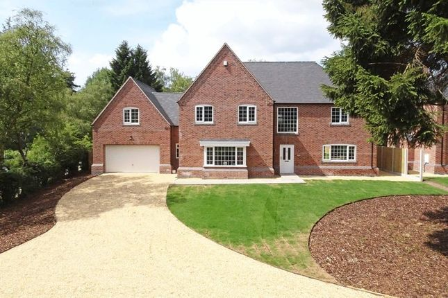 Thumbnail Detached house for sale in Shelmore House, Pinewood Drive, Ashley Heath