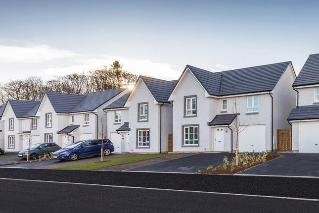 """Thumbnail Detached house for sale in """"Balmoral"""" at Victoria Street, Monifieth, Dundee"""