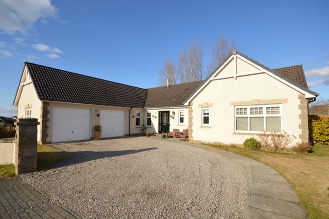 Thumbnail Bungalow for sale in Redwood Avenue, Inverness