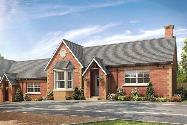 Thumbnail Terraced bungalow for sale in Valley Park, Flora Close, Exmouth, Devon