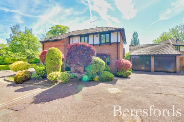 Thumbnail Detached house for sale in Birdbrook Close, Hutton, Brentwood, Essex
