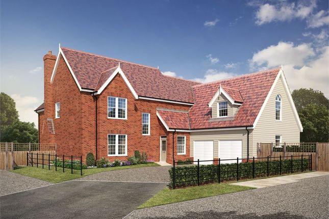 Thumbnail Detached house for sale in Bucklesham Road, Foxhall, Ipswich, Suffolk