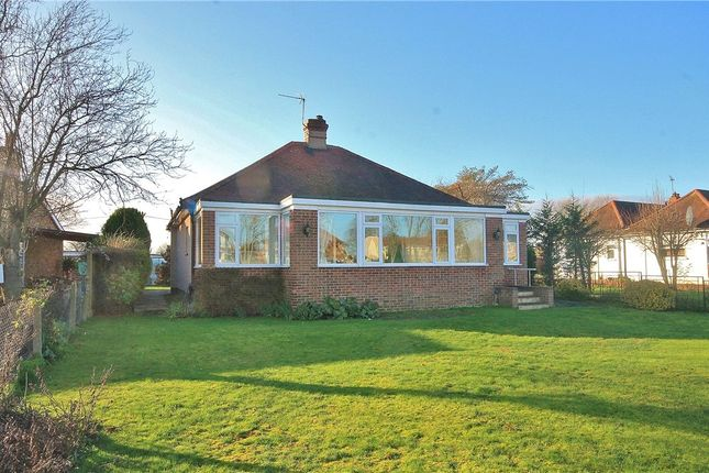 Thumbnail Detached bungalow to rent in Laleham Reach, Staines Upon Thames, Chertsey, Surrey